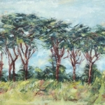 Trees-at-Trebetherick