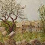 Olive tree among the ruins of Al Bara